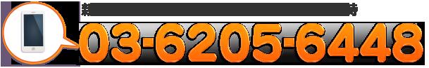 TEL: 0120-980-816